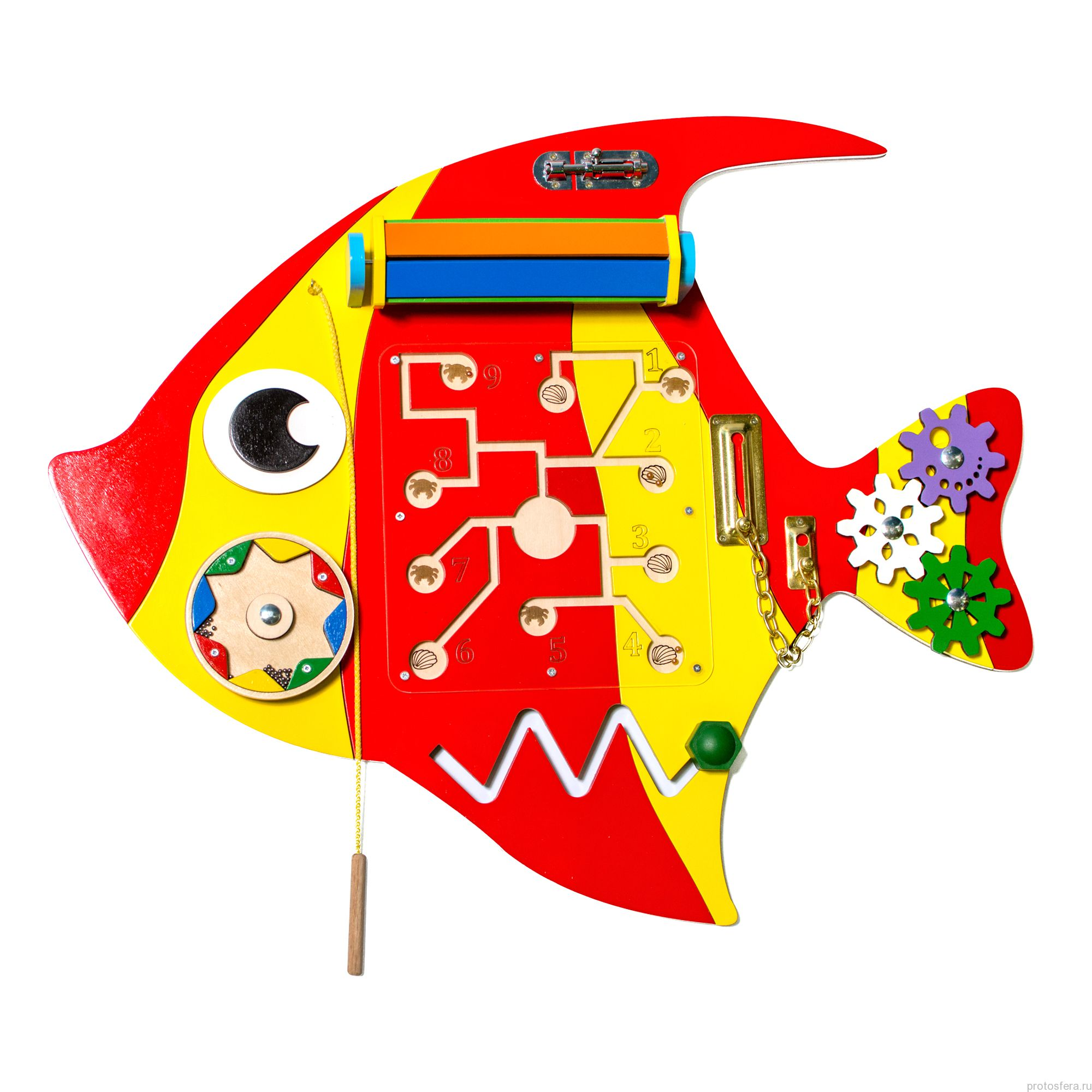 Рыба Скалярия